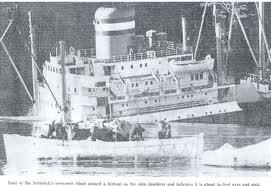 zinkendschip