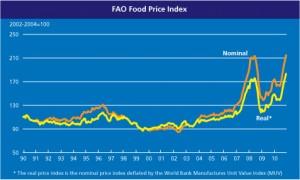 Duidelijk zichtbaar de piek, mede door biobrandstoffen, en de dip door de economische crisis