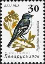Posterdier van Klimaatpanici de Bonte Vliegenvanger, hier op Russische postzegel