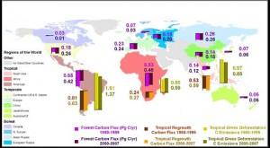 Hoeveel koolstof absorbeert de biosfeer?