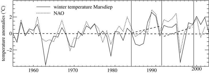 zeewatertemperatuur Marsdiep bij Texel volgt de NAO