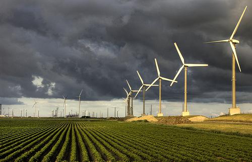 Windproject van De Windvogel (foto: www.windvogel.nl)