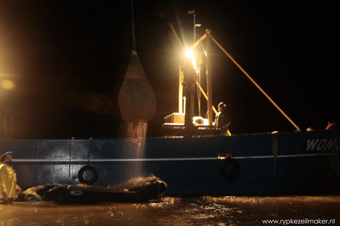 Het net met kokkels takelen de vissers op het schip, een platbodem die bij 70 cm water vlot kan komen