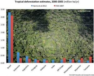 Ontbossing: Brazilie kampioen, maar ook hier is ontbossing recent afgenomen