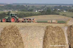 'energiegewassen' van Duitse boeren leveren 17,5 ct subsidie per kWh 'bio-energie'-opwekking