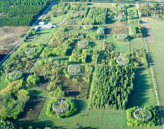 Co2 verrijkings experimenten in open lucht tonen bij verdubbeling 40 procent meer groei
