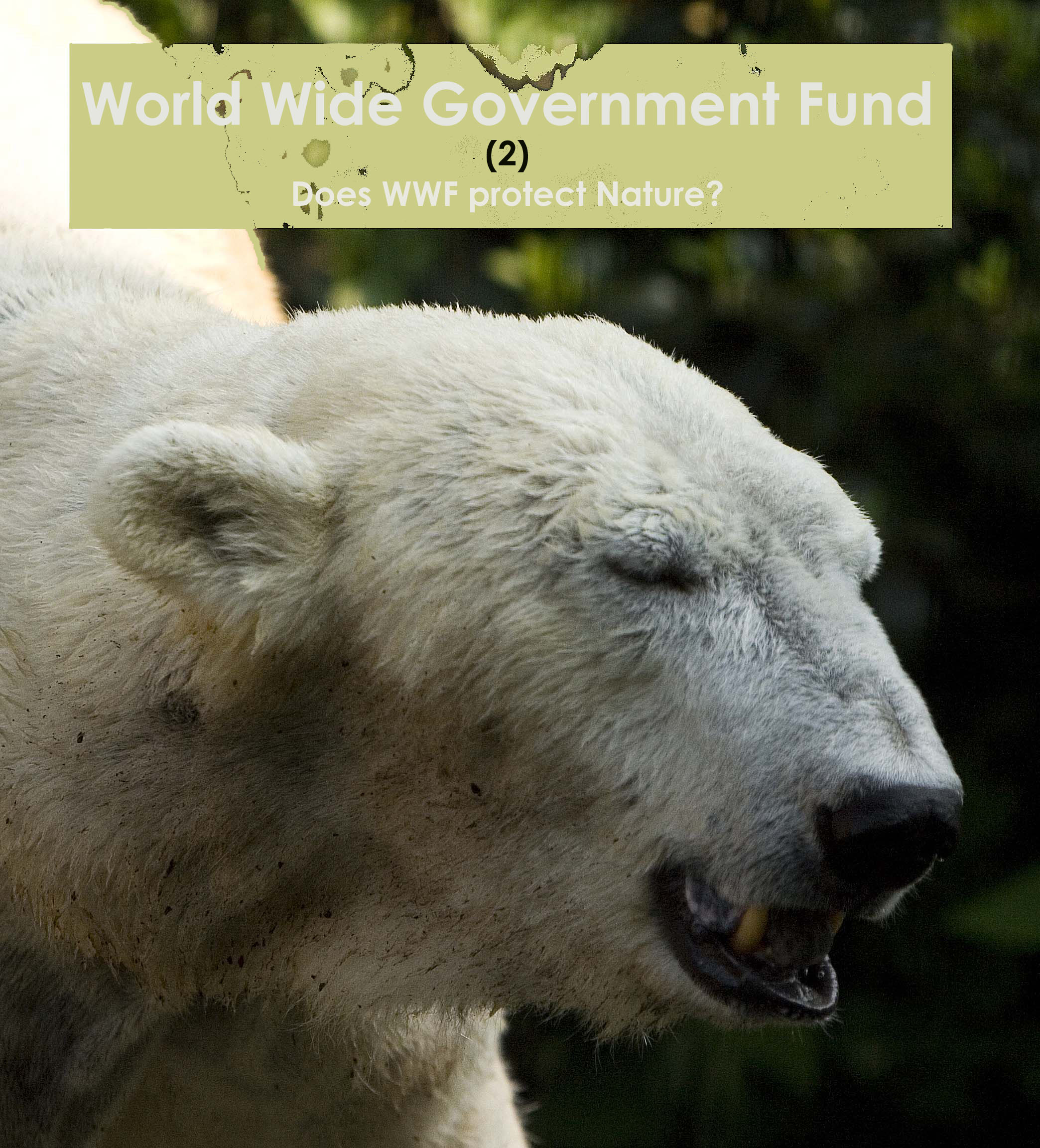 The WWF does not mention the hundreds of polar bears shot for hunting tourism annually, but advocates 'saving' the species in the most expensive and ineffective way