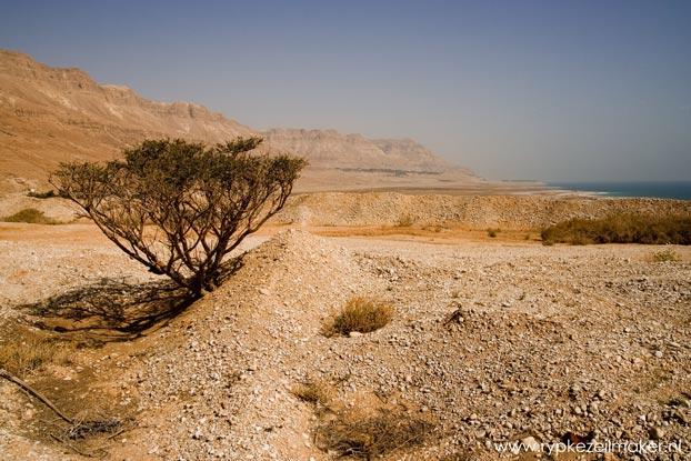 De Dode Zee, in de Rift Vallei die tot in Zuidelijk Afrika loopt