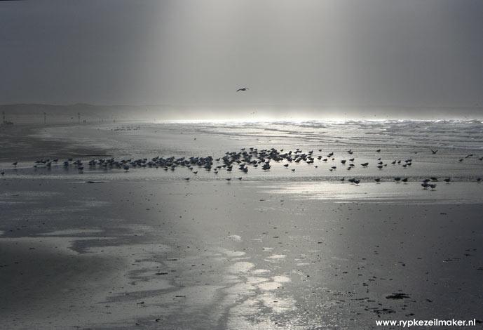 Ieder jaar verandert de zeebodem weer