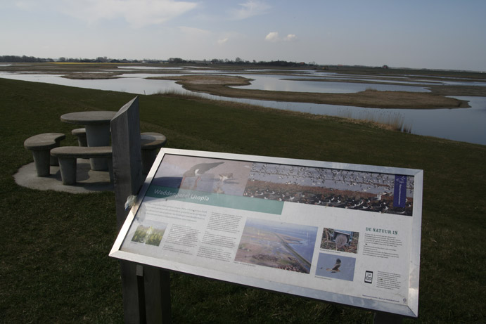 Hoogwatervluchtplaats door Natuurmonumenten gemaakt op Texel met geld uit Waddenfonds.  Relatief simpele ingrepen met grote opbrengsten