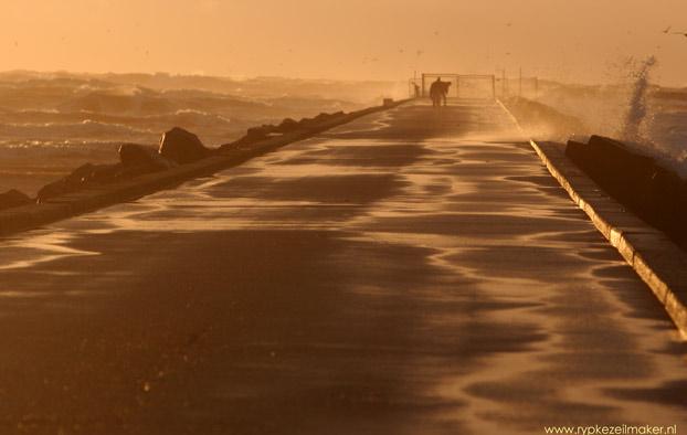 Natuurlijke bodemberoering in Noordzeekustzone