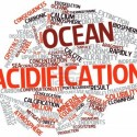 16489225-abstract-word-cloud-for-ocean-acidification-with-related-tags-and-terms