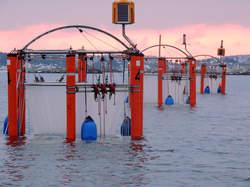 CO2-verrijkingsexperiment op zee