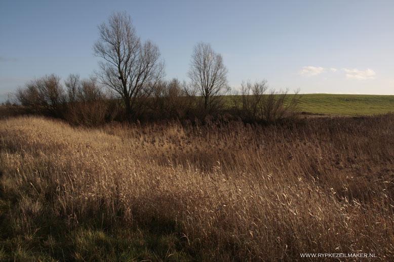 Een afgedekte vuilnisbelt, habitattype H1234 met unieke kunstmatige heuvel