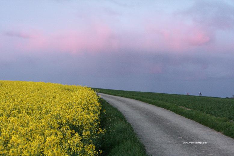 Feike Sijbesma belandde in de Duurzame top 100 van Trouw omdat hij landbouwgewas in de fik wil steken (biobrandstof)
