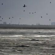 Wie weet beschikken Kamp en Mansveld over onvermoede klimaatkrachten en kunnen ze stormen afremmen?