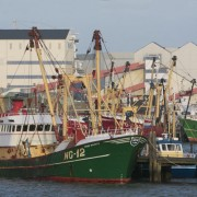 De loodsen van Frisia, grotere invloed op Wadbodem dan vissers bij Griend