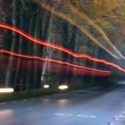 Bomen langs de weg: 'Onfaailig!'