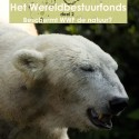 Natuurbescherming bij WNF is marketing en donateursgedreven, andere partijen zijn lokaal effectiever, maar WNF loopt met de credits weg