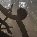 Natuursector raakt in de knoop bij verdere lastenverzwaringen