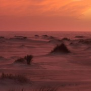 De Hors, de Hollandse Sahara aan zee