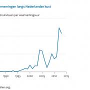 Exponentiele toename bruinvis Noordzeekust, kan deels artefact zijn van meer waarnemers