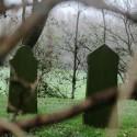 Joodse begraafplaats Tacozijl. De oudpapieren journalistiek heeft zijn beste tijd gehad