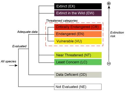 Volgens IUCN mag je de Rode Lijst niet gebruiken voor consumptieadvies. * van 14 strafpunten paling Viswijzer komen van Rode Lijst