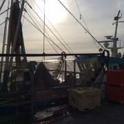 Schuldig door verdenking: Vibeg is Kafka op de Noordzee
