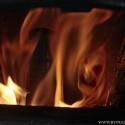 biomassa uit hout: leuke aanvulling, geen vervanging tenzij je alle bossen wilt kaalscheren voor klimaatbeleid....