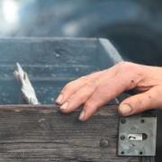 rokerijen accepteren illegaal gevangen schieraal