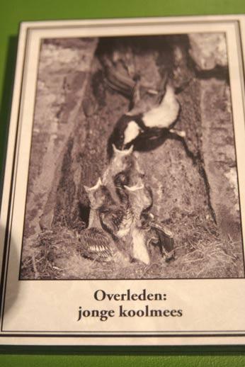 Valse klimaatindoctrinatie van kinderen door Vogelbescherming met zielige diertjes.