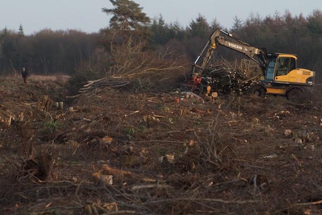 Natuurontwikkeling 2.0, destroy!
