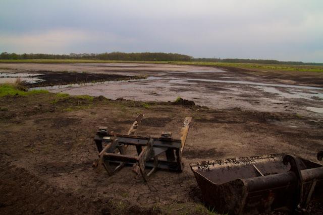 Het moeras in aanleg