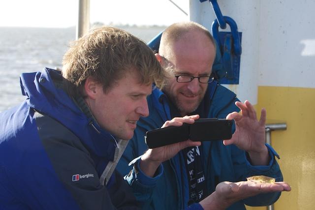 De visserij-'expert' van de Waddenvereniging voor het eerst in zijn leven mee op een vissersschip. Alleen in wetenschap geinteresseerd waar dit de fondsenwerving van pas komt