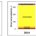 bron Sustainable Eel Group: paling in Zweden volledig afhankelijk van menselijk herstel, dankzij menselijke blokkade wateren