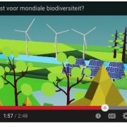 Het PBL beweert voor de overheid dat windturbines wildlife helpen ipv leefgebied verwoesten en vogels/vleermuizen meppen