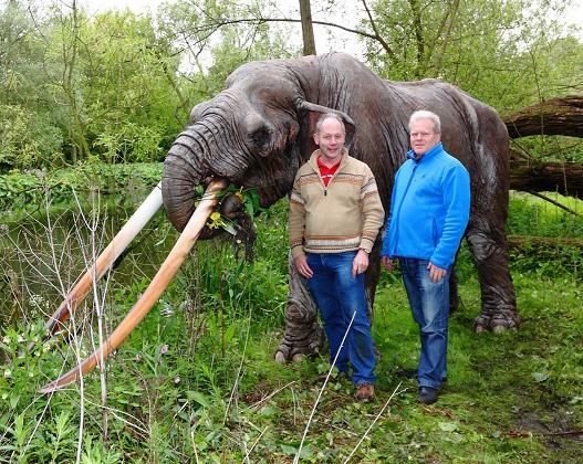 André Bijkerk achtergrond soort olifant