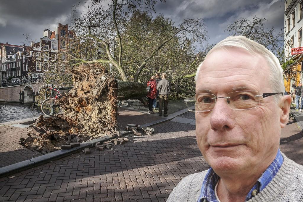 Door zware storm omgewaaide bomen