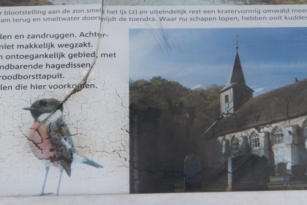 Gevandaliseerd informatiebord van al het opwindends dat hier valt te beleven, met de roodborsttapuit als kroon op het werk van Staatsbosbeheer
