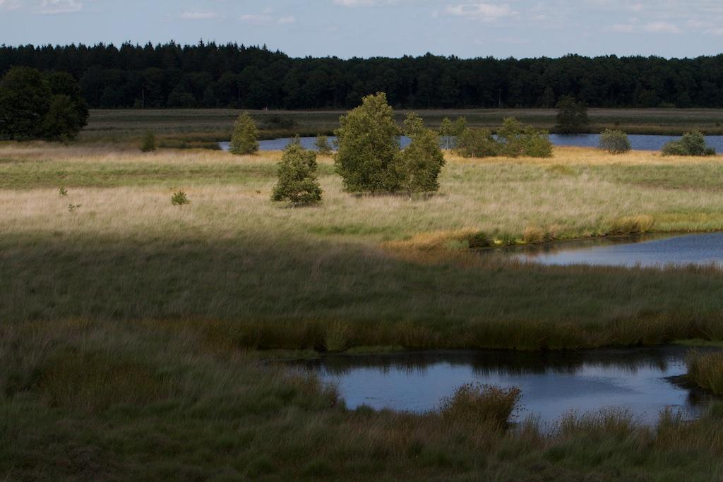 Pingo-ruines, dat zijn meertjes met een verleden