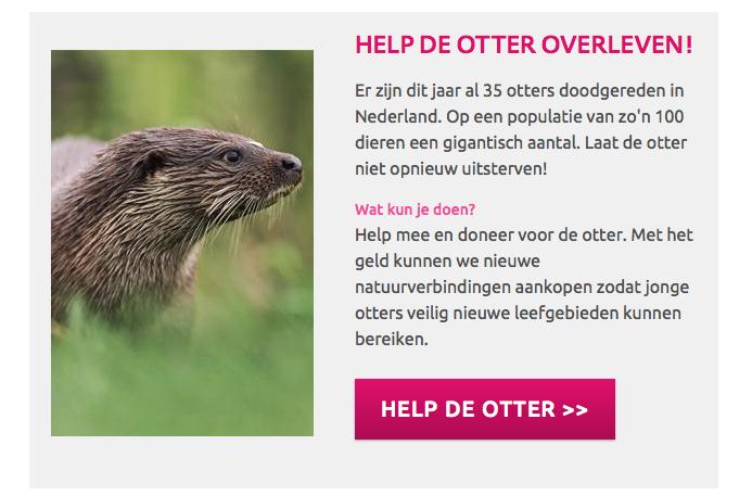 Otter doodgereden: meteen melkt Natuurmonumenten het incident voor een bedelactie