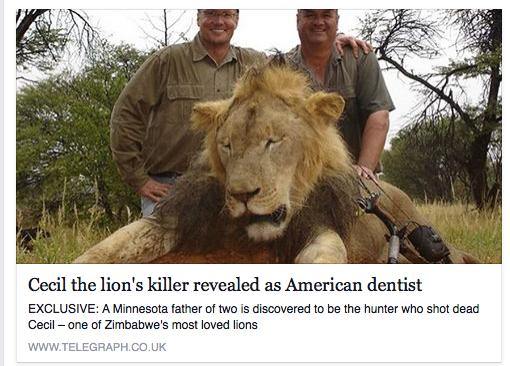 Wat maakt 1 leeuw zo bijzonder om de jager de dood in te wensen?