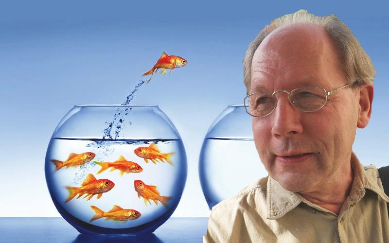 André Bijkerk achtergrond goudvissen2
