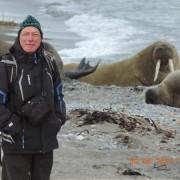 Jeroen walrussenkopie