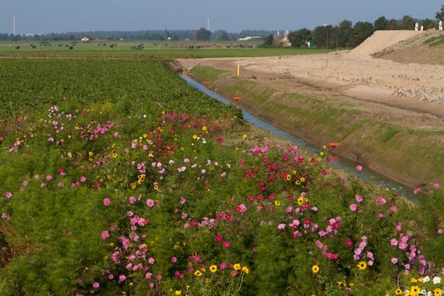 De polder die onder water zou moeten voor de natuurversie van Natuurmonumenten, die DE natuur moet heten dankzij hun miljoenenmarketing