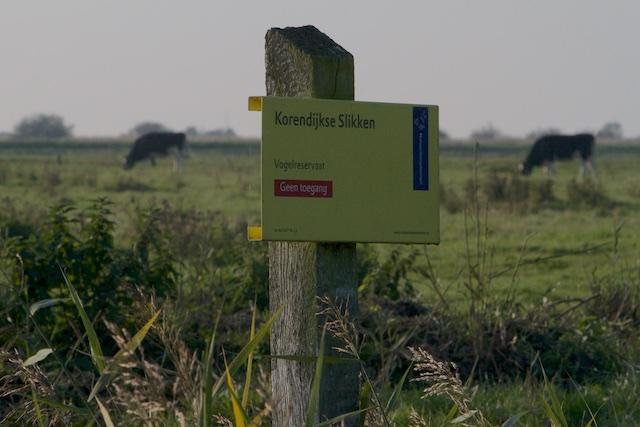 ...en de Verboden Zone, van Natuurmonumenten waar plots allerlei kostbare procedurebeestjes zouden leven als de Noordse Woelmuis, en die massaal het gebied intrekken zodra Natuurmonumenten er haar handen op legt