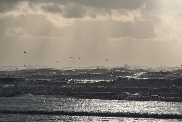 Stormachtige Noordzee, je werkruimte