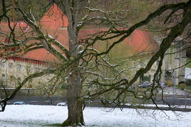 Het klooster Gut Boddeken, dat al tijdens de Franse bezetting tot ruine was vervallen. De eiken op de voorgrond zijn typische natuursymbolen die veel in germaanse neo-paganistische tekeningen voorkomen als diep gewortelde en vertakte levensboom. Of het nu de Uppstalboom is of Ygdrassil, de levensboom in Asgaard