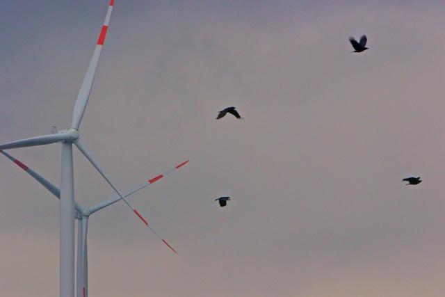 Windturbines draaien niet vanwege 'het klimaat' of de energie, maar om het politieke machts-evenwicht te bewaren